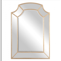 Francoli Decorative Mirror w/Lt Antique Gold Outline Frame