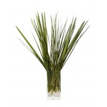 Natural Sabal Grasses in Faux Water