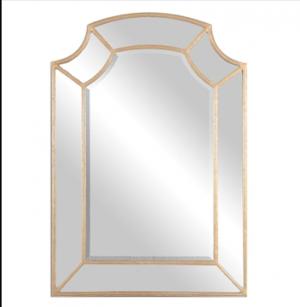 Francoli Decorative Mirror w/Lt Antique Gold Outline Frame